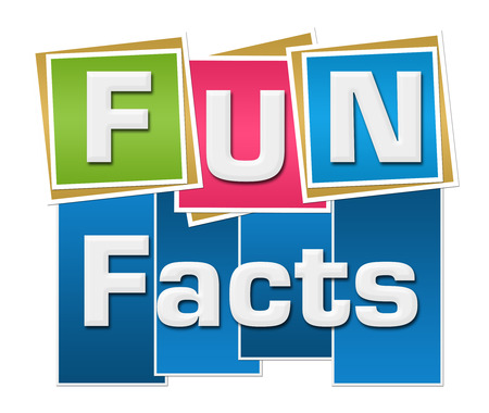 Fun Facts Colorful Squares Stripes