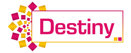 destiny: Destiny Pink Gold Circular Bar
