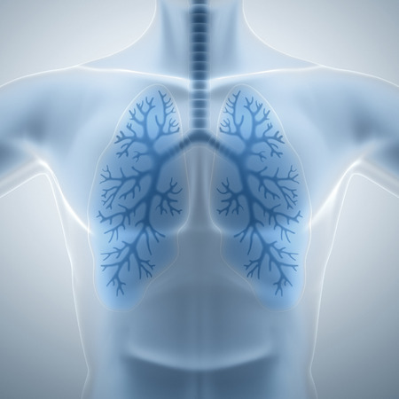 internal: Clean and healthy lungs