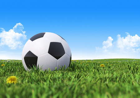 Black and White soccer ball on a green grass field photo