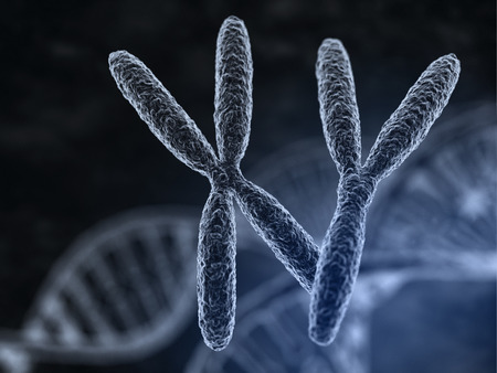 Man and woman chromosomes  with macro focus effect