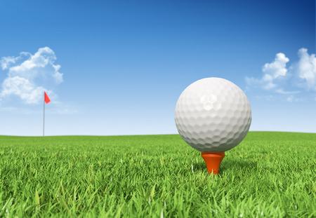 풀밭에서 티 골프 공 스톡 콘텐츠