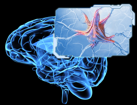Neurons and nervous system. 3D illustration