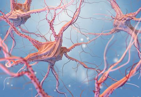 Neuronen und Nervensystem. 3D-Darstellung von Nervenzellen. 3D-Darstellung