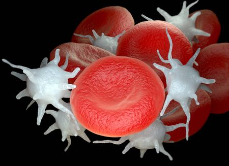Red blood cells and activated platelets or thrombocytes. 3D illustration