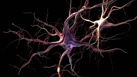 3d rendered illustration of nerve cells Stockfoto