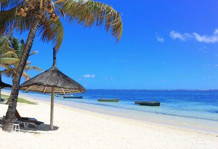 mauritius: Palm beach met boot op de oceaan