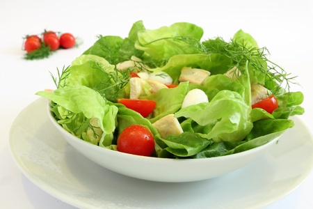 Fresh salad with chicken breast,lettuce, tomatoes and mozzarella cheese Stock Photo - 8574408