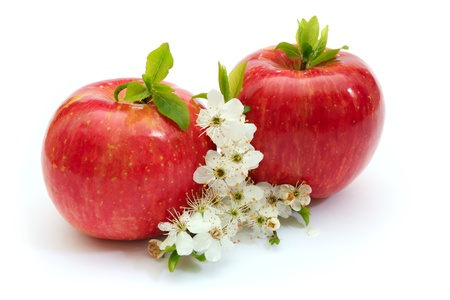 red apples with white flowers Stock Photo - 9001447