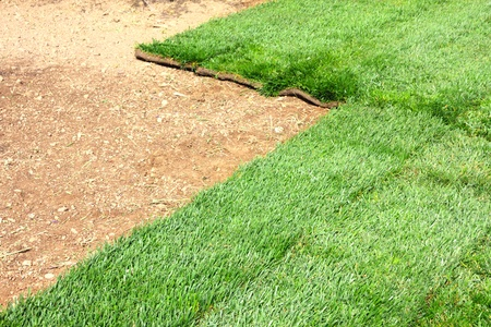 green sod grass and brown earth Background photo