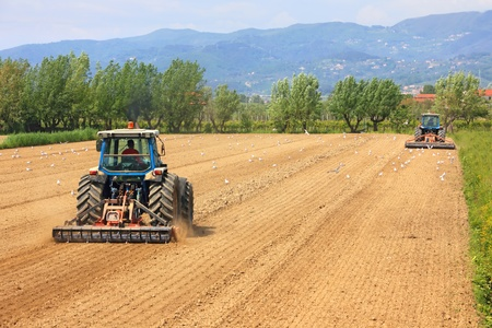 ploughing field: agriculture, two tractors working on a field