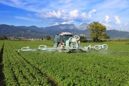 pesticides: agriculture, tractor with chemical treatment spraying pesticide on cultivated field