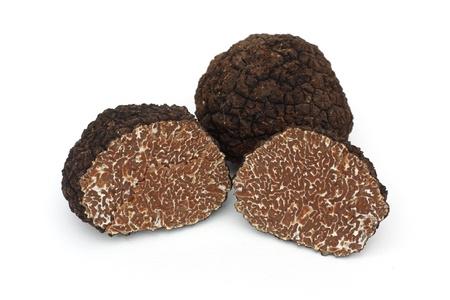 truffe blanche: Truffe noire sur un fond blanc