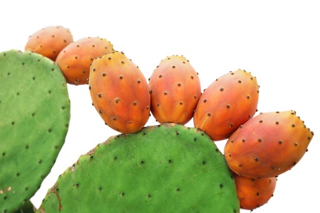 prickly pears cactus fruitsand leaf isolated on white background