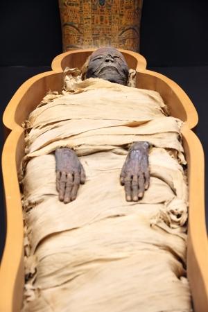 mummified: Egyptian mummy  on an open casket Editorial