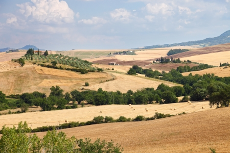 Scenic view of typical Tuscany landscape near Siena, Italy photo