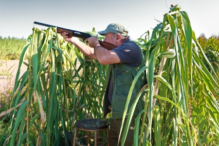 Male hunter in the field aiming the hunting rifle during a hunt.