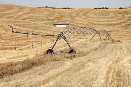 Water irrigation system on dry harvested corn field Stock Photo