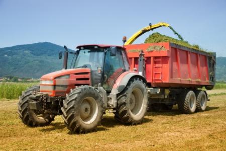 tracteur remorque tracteur rouge et remorque collecte foin