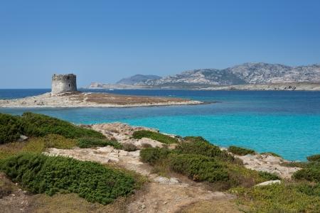 sardinia: La Pelosa beach and Aragonese tower in Stintino, Sardinia, Italy. Stock Photo