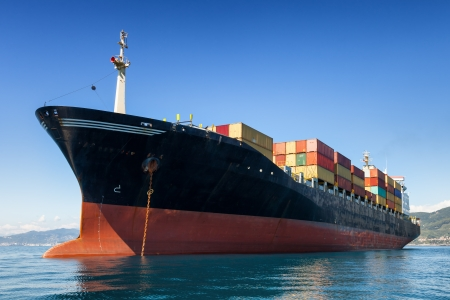 Risultati immagini per cargo portacontainer