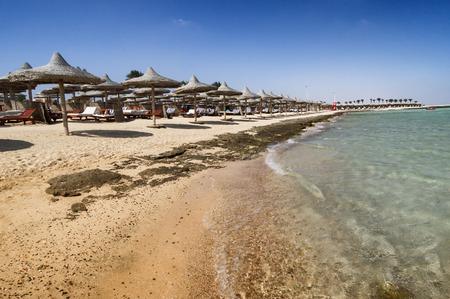 marsa: Marsa Alam beach with row of umbrella, Egypt Stock Photo