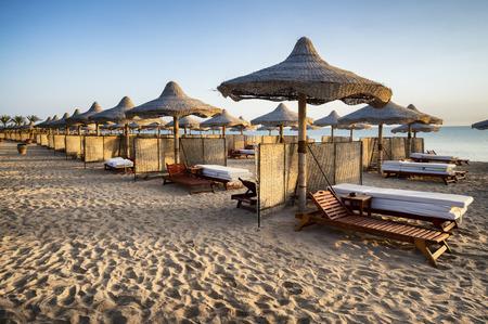 alam: sunbeds and beach umbrella in Marsa Alam, Egypt