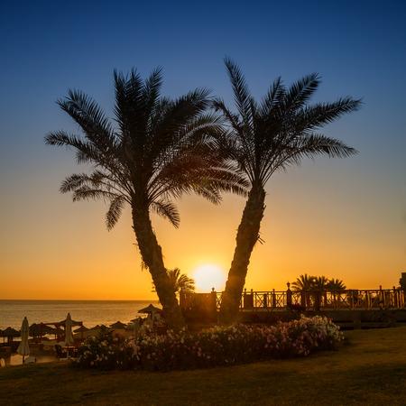 alam: Sunrise over the Red sea, Marsa Alam, Egypt