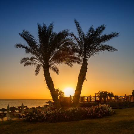 marsa: Sunrise over the Red sea, Marsa Alam, Egypt
