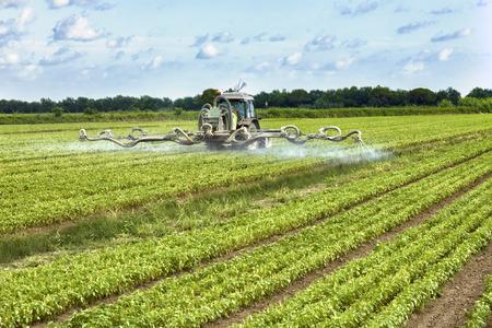pulverizador: tractor de fumigación de pesticidas en un campo Foto de archivo