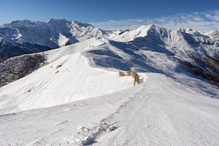slope: high mountain slope with fresh snow Stock Photo