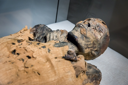 mummification: egyptian mummy