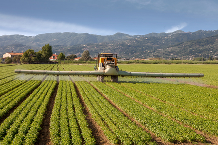 agriculture, tractor spraying pesticides on field farm 스톡 콘텐츠