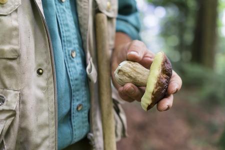 man picking mushroom in autumn forest