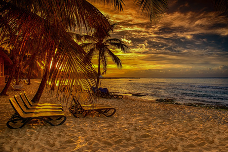 paradise bay: caribbean beach with palm at sunset Stock Photo