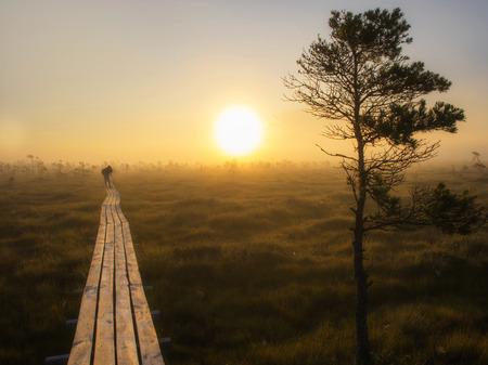 Wooden pathway with photographer, sunrise, marsh