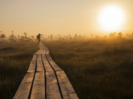 Wooden pathway with photographer,early summer morning,marsh Foto de archivo