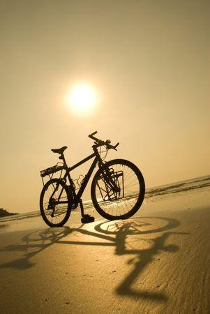 road bike: Beach bike