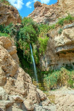 fountainhead: National Park Ein Gedi