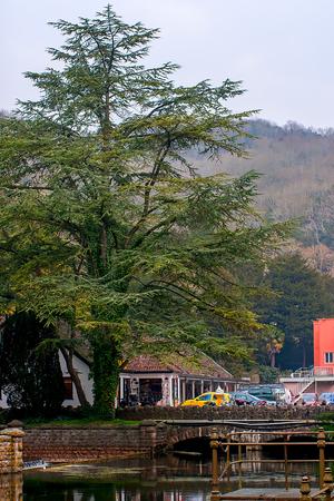 Cheddar village, Somerset, UK