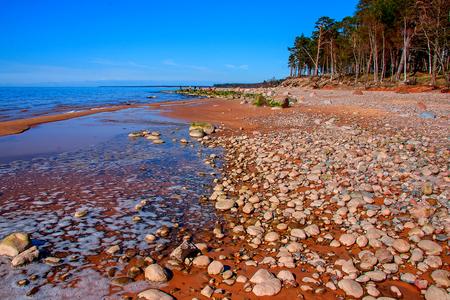 backwater: Baltic Sea coast. Kurmrags