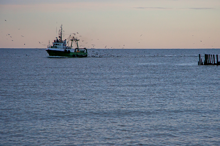 whiff: The fishing vessel seagulls escorted back to shore Stock Photo