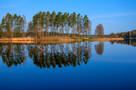 Forest reflection in the lake Stock Photo