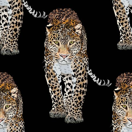 Vector sketch of walks leopard.Seamless leo pattern.Animal print.Wildlife. Illusztráció