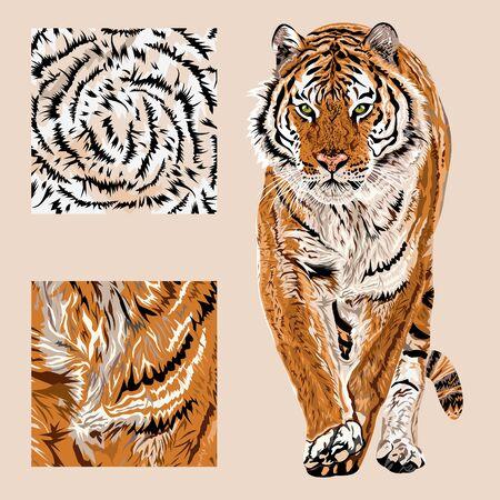 Vector sketch of walks bengal tiger.Textile leo pattern.Animal print.Wildlife. - Vector