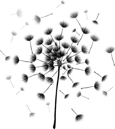 Dandelion Flower Pattern.Hand Drawn Floral Illustration Stock fotó