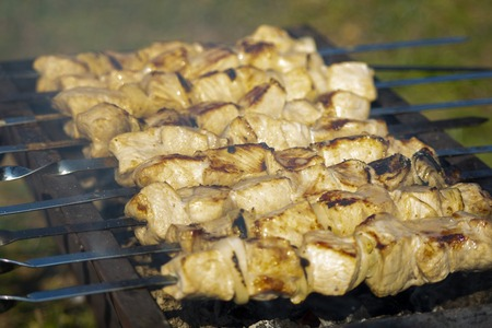Pork kebab with a mixture of spices on skewers on the old grill