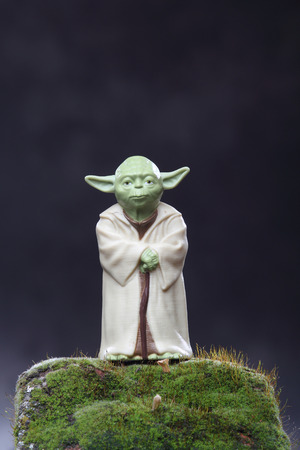 Yoda figure and moss  Ecology Concept