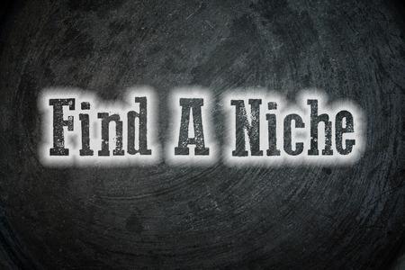 niche: Find A Niche Concept