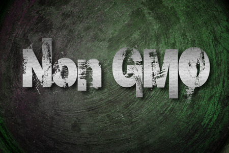Non GMO Concept text on background photo